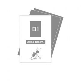 Carteles B1